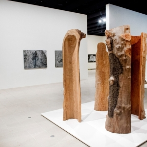Installation view of Ana Mendieta - Totem Grove 1984