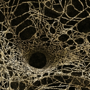 angelo-musco-aranea-spiders-web-2009