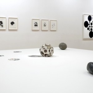 Gabriel Orozco, Installation view of Thinking in Circles at The Fruitmarket Gallery, 2013