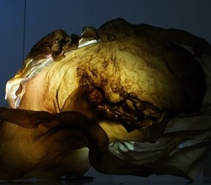 Threshold (detail, 1), Stehlikova and Driscoll, 2012. Image courtest of the artists and GV Gallery, London