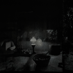 Josef Sudek, In the Magic Garden: The coming of Evening, 1961.