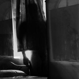 Karl Dmitri Bishop, All the lovers series