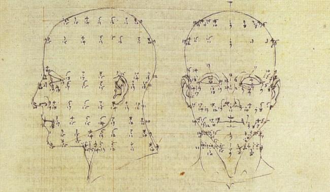 Piero della Francesca, Perspective of Anatomy from De Prospectiva Pingendi, 1480